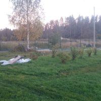"""Забор из ДПК-штакетника """"Вечное Дерево"""" на ленточном фундаменте"""